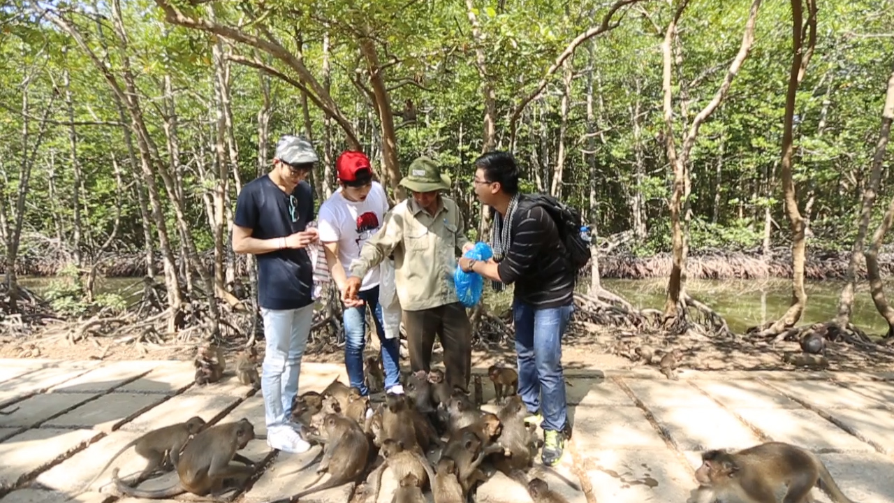 can-gio-mangrove-forest-1-days7